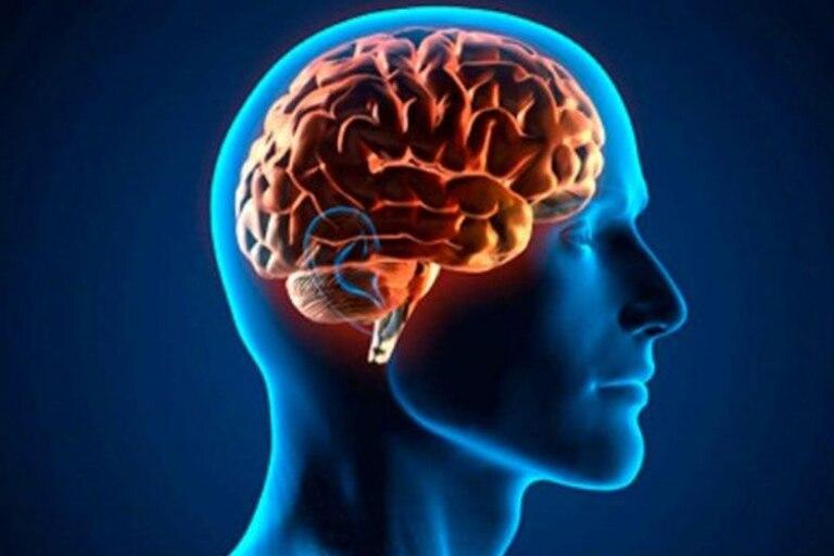 El trastorno de estrés postraumático es un trastorno psiquiátrico complejo provocado por un trauma físico y/o psicológico