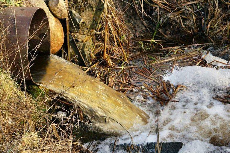 Un estudio de la Universidad de la Plata había alertado sobre la presencia de estos contaminantes