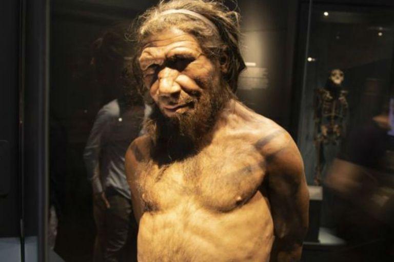 Los nuevos hallazgos sobre los neandertales arrojan una luz diferente sobre la vida de nuestros primos lejanos