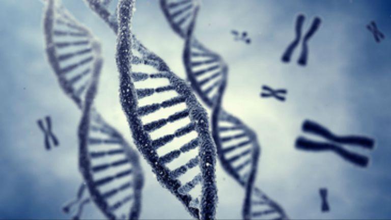 Actualmente el test valora 51 fármacos y se va actualizando año a año a partir de las novedades que surjan