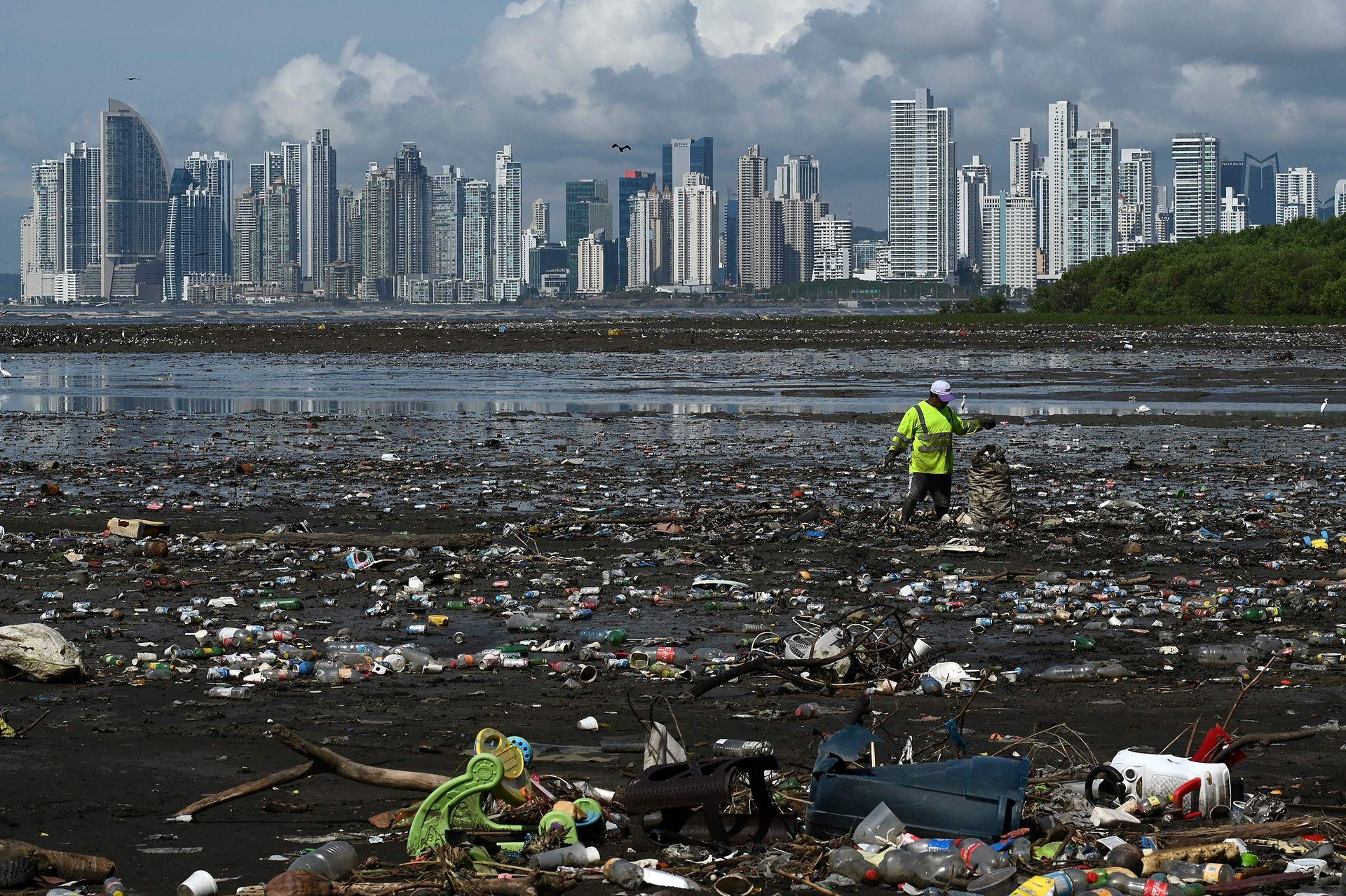 El Día de la Tierra tiene sus inicios teóricos desde la década de los años '60s cuando se empezaron a escuchar las primeras pequeñas manifestaciones sobre los problemas ambientales