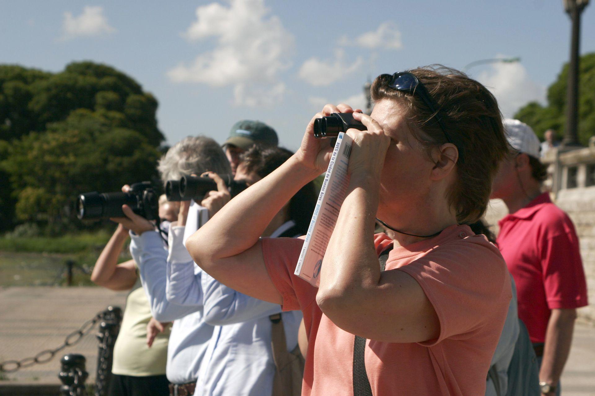 En la Reserva Ecológica Costanera Sur, octubre es el mejor mes para ver todo tipo de pájaros
