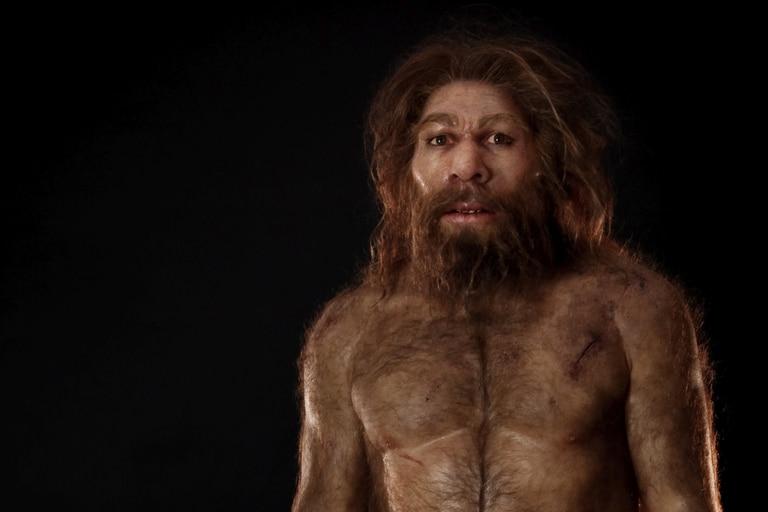 Revelan el origen del humano primitivo y los motivos de su desaparición