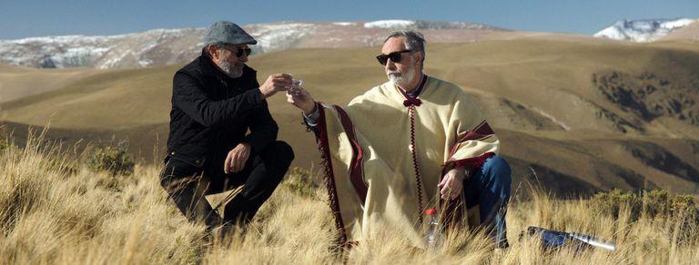 Quiénes ganan y quiénes pierden en el gran año del cine argentino