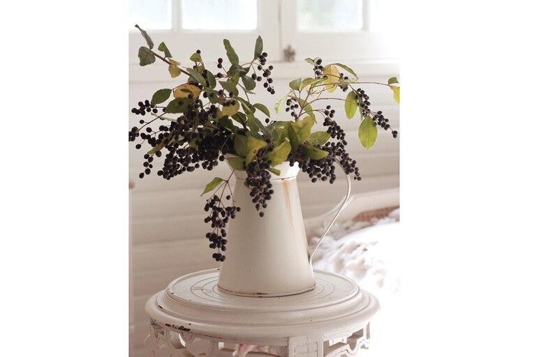 A veces más atractivos que las flores son los frutos, como los de este ligustro, tan común de encontrar formando cercos. Otra opción son los crataegus y la nandina doméstica. Y los que tengan la suerte de pasar las fiestas en una quinta, ¡atención a las zarzamoras y frutillas!
