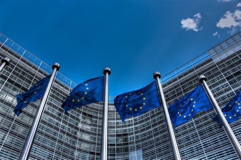 La intensificación de las negociaciones internacionales dejó al descubierto falencias internas