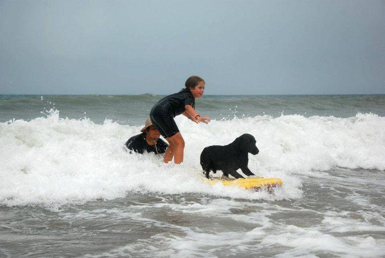 Los chicos adoran aprender surf acompañados por el habilidoso perro.