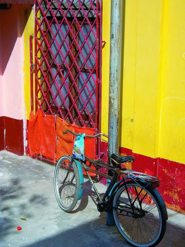 La bicicleta. En la lente Micaela Zelaya (13)