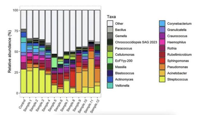 Dinámica de la variación de las comunidades microbianas a lo largo de doce semanas. Las barras representan la modificación del perfil microbiano a lo largo del tiempo