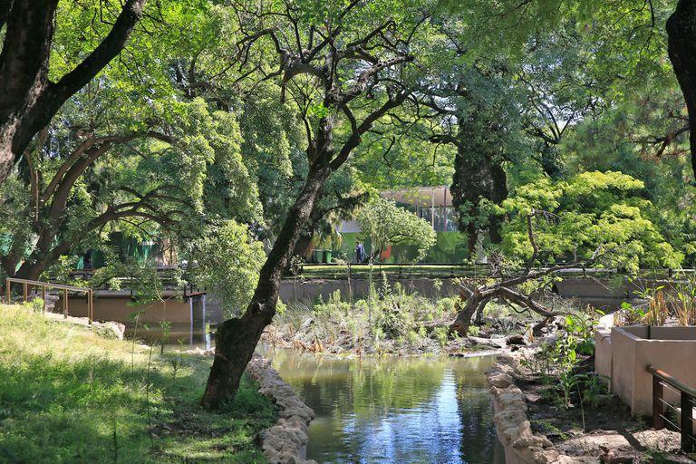Este espacio abierto en diciembre intenta replicar un entorno lo más natural posible, con el agua de los estanques remediándose en forma natural y los pastizales crecidos