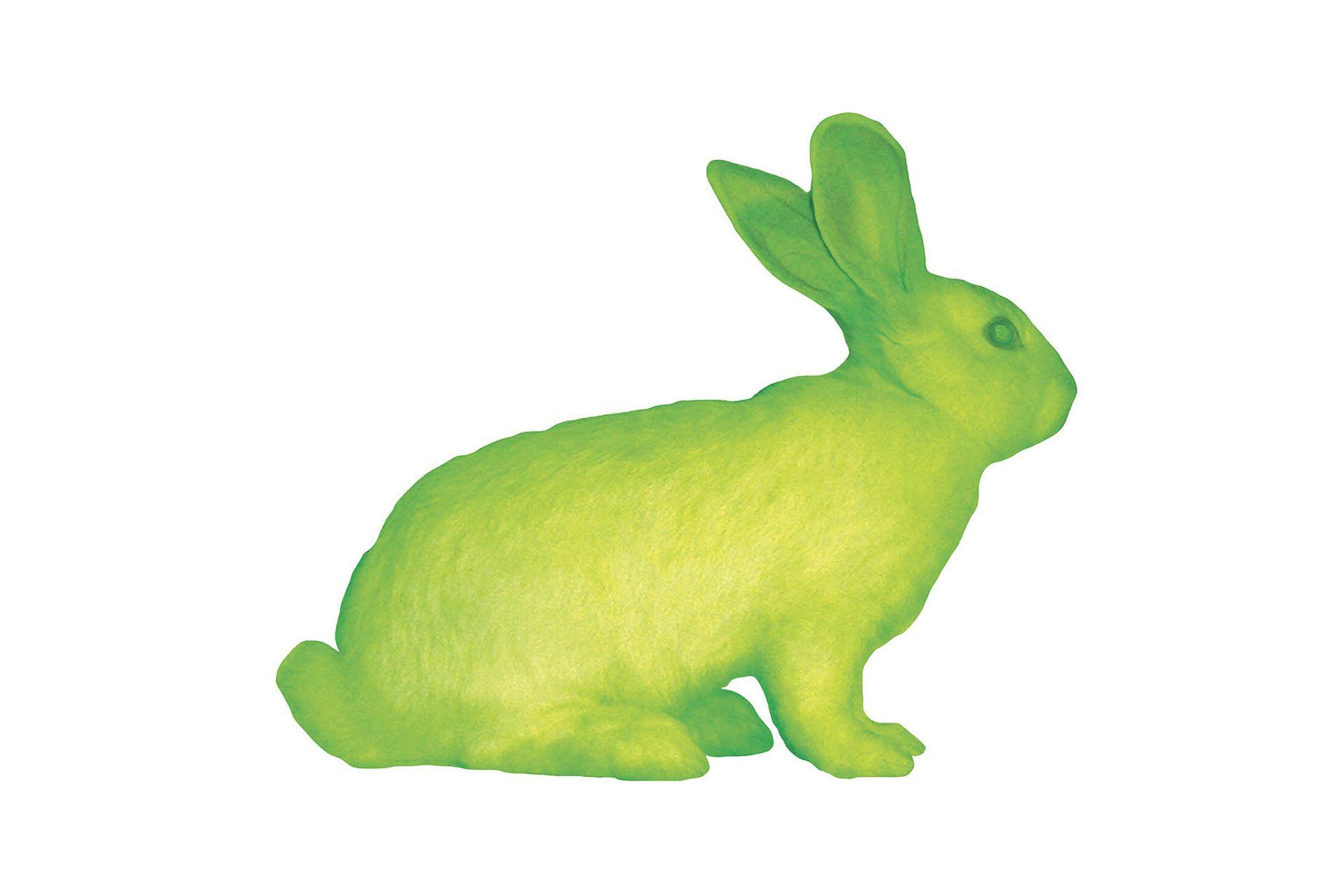"""""""Alba"""", de Eduardo Kac. Este artista brasileño presentó un conejo que se volvió verde rutilante al inocularle el ADN de una medusa. Kac quería crear una cultura híbrida que conjugase un ser vivo con una obra de arte."""