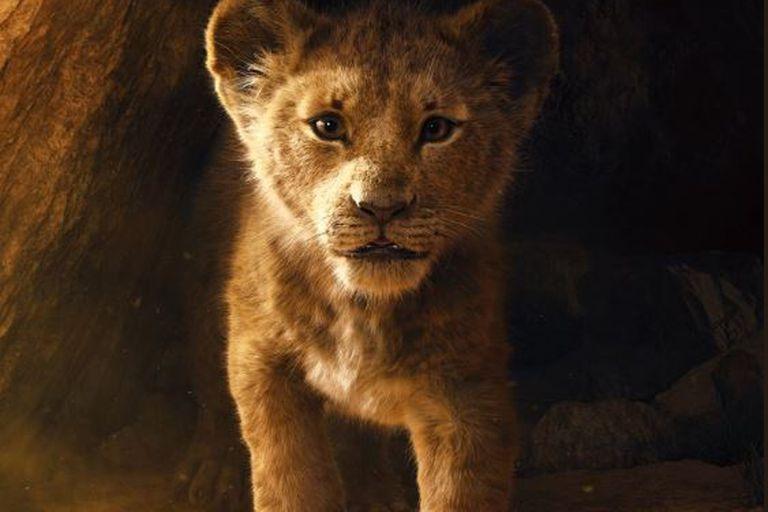 La primera imagen de Simba, como cachorro
