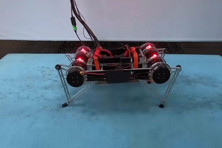 El sistema desarrollado por Google busca acelerar los procesos de aprendizaje de los robots para desarrollar equipos que puedan desplazarse de forma autónoma sin intervención humana