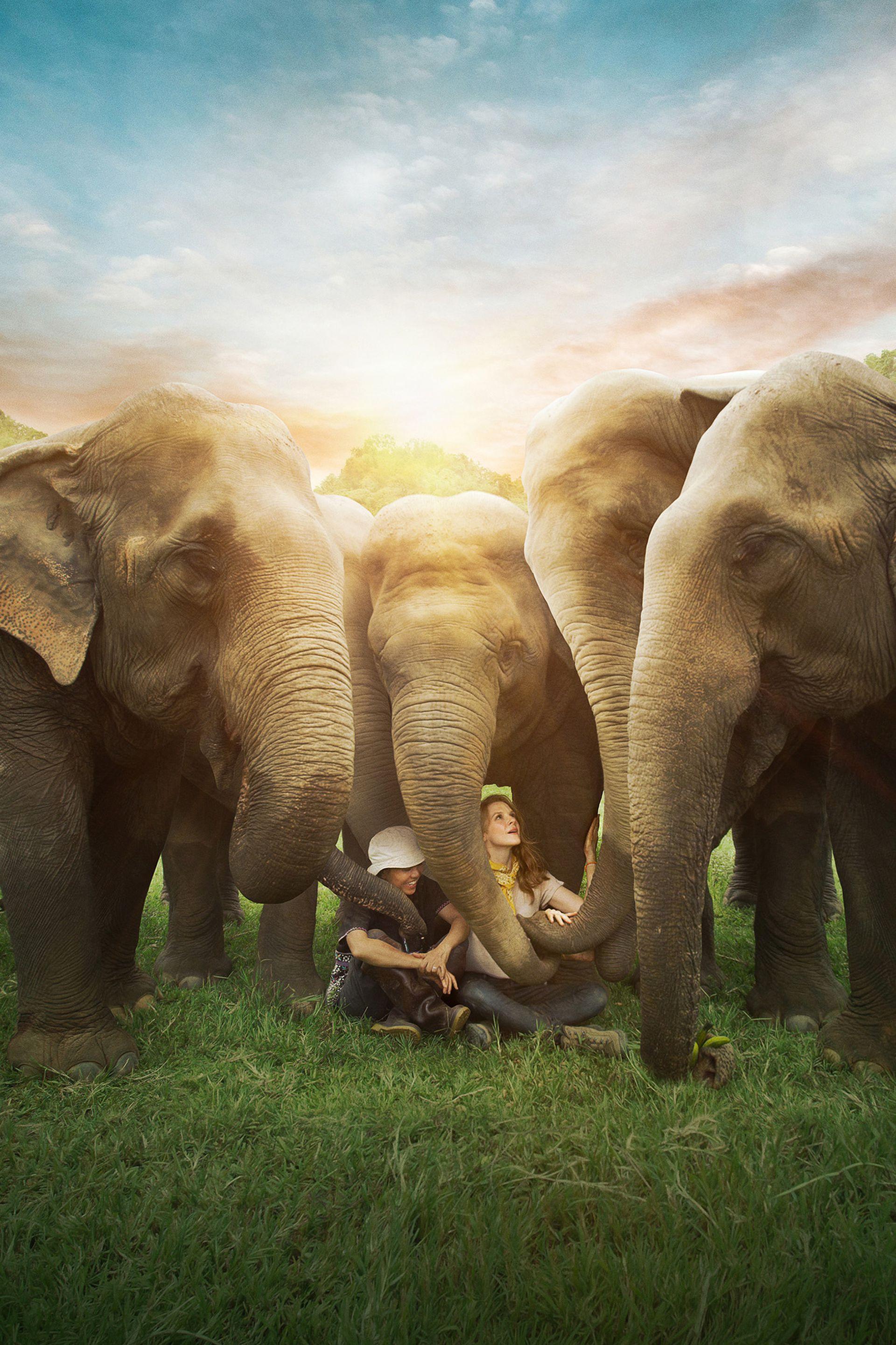 Lek Chailer y Ashley Bell entre elefantes rescatados