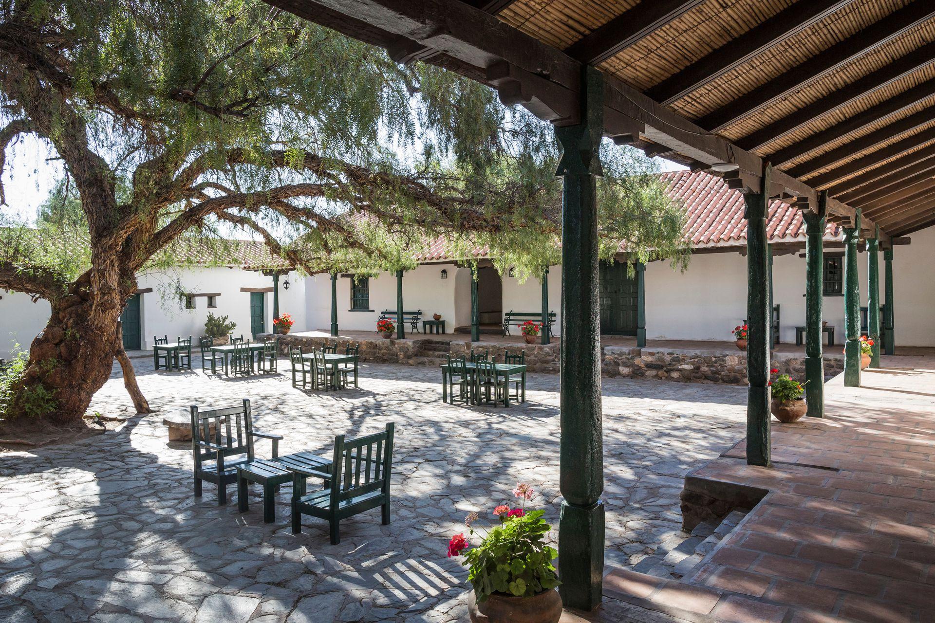 El gran molle, presencia insoslayable en el patio e la Hacienda de Molinos.