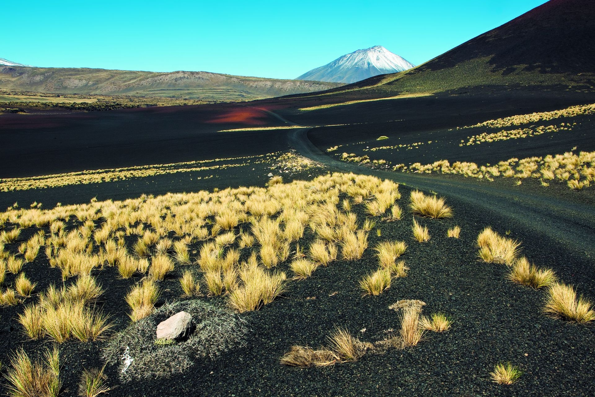 El volcán Payún Liso, uno de los 800 que gestaron esta reserva de lava y pampas negras en el sur mendocino.