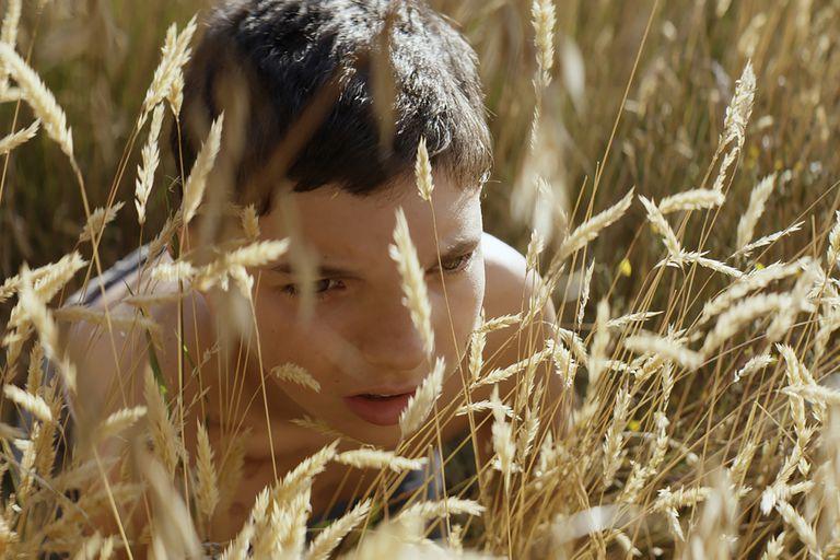 La película argentina que se convirtió en la más vista en Estados Unidos