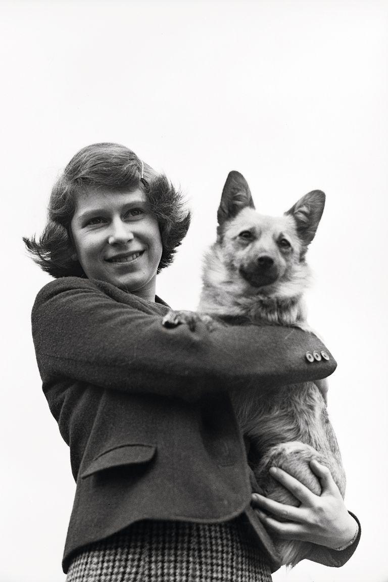 La primera mascota de su familia se llamó Dookie y su padre, el rey George VI, lo trajo a su hogar cuando ella tenía 7 años.