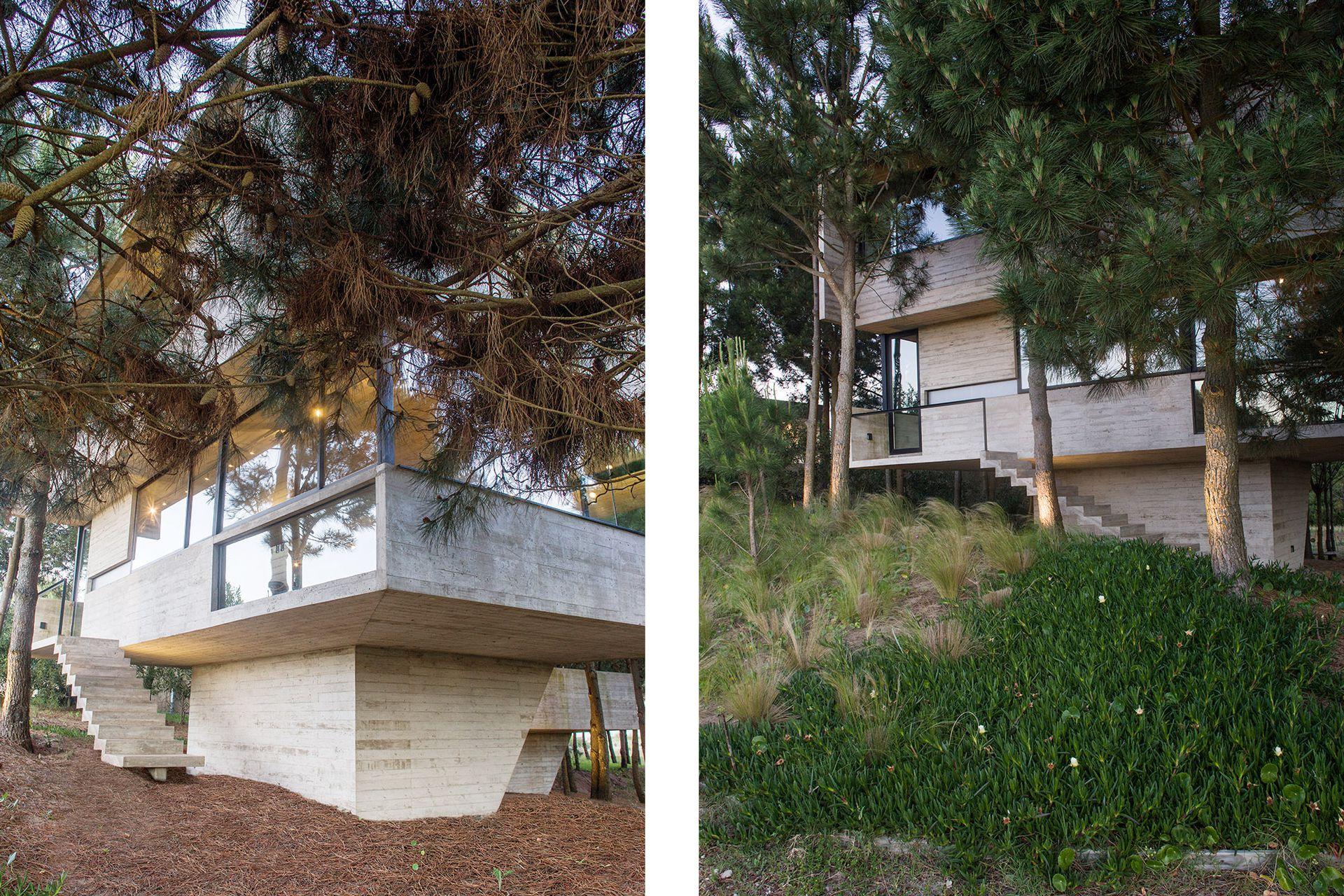 La casa se levantó en la cota de mayor altura de un lote que desciende a medida que se aleja de la calle.
