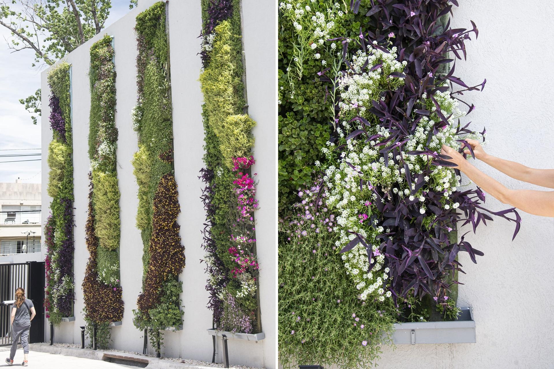 Tiras de cinco metros de altura con plantas cubren una medianera vehicular.