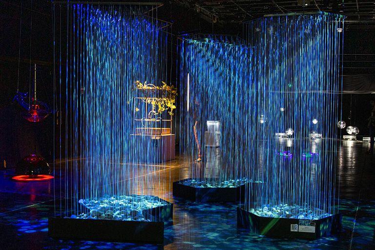 Un concurso de ciencia, arte y tecnología para participar del festival Noviembre Electrónico