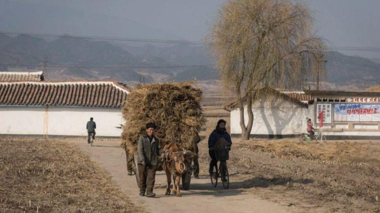 Lejos de Pyongyang, la vida no es un paraíso socialista