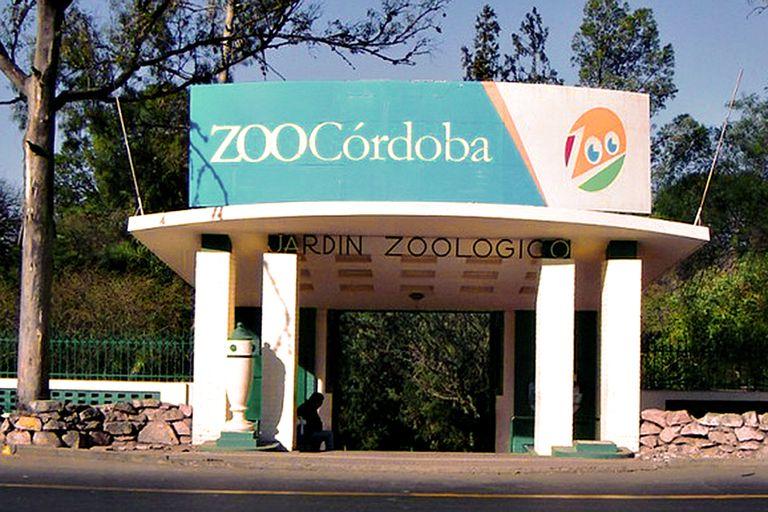 Estado de abandono y falta de alimentación, fueron las principales denuncias contra el zoológico