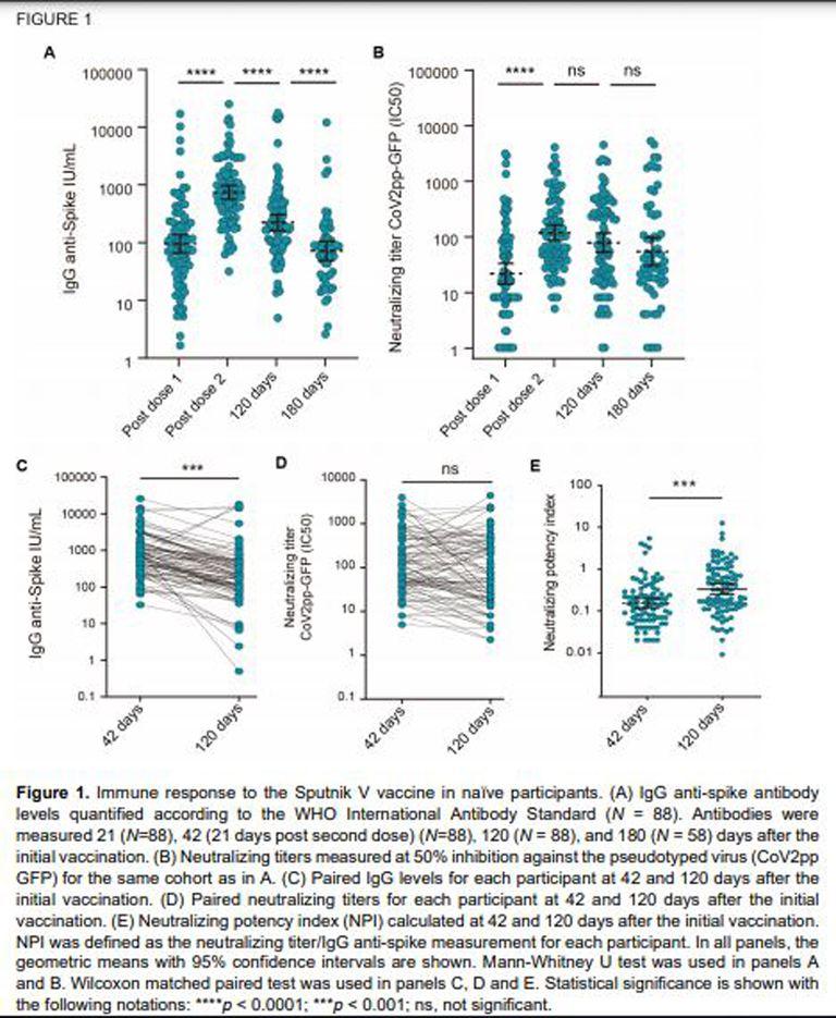 Los gráficos de la investigación publicados en el pre print.