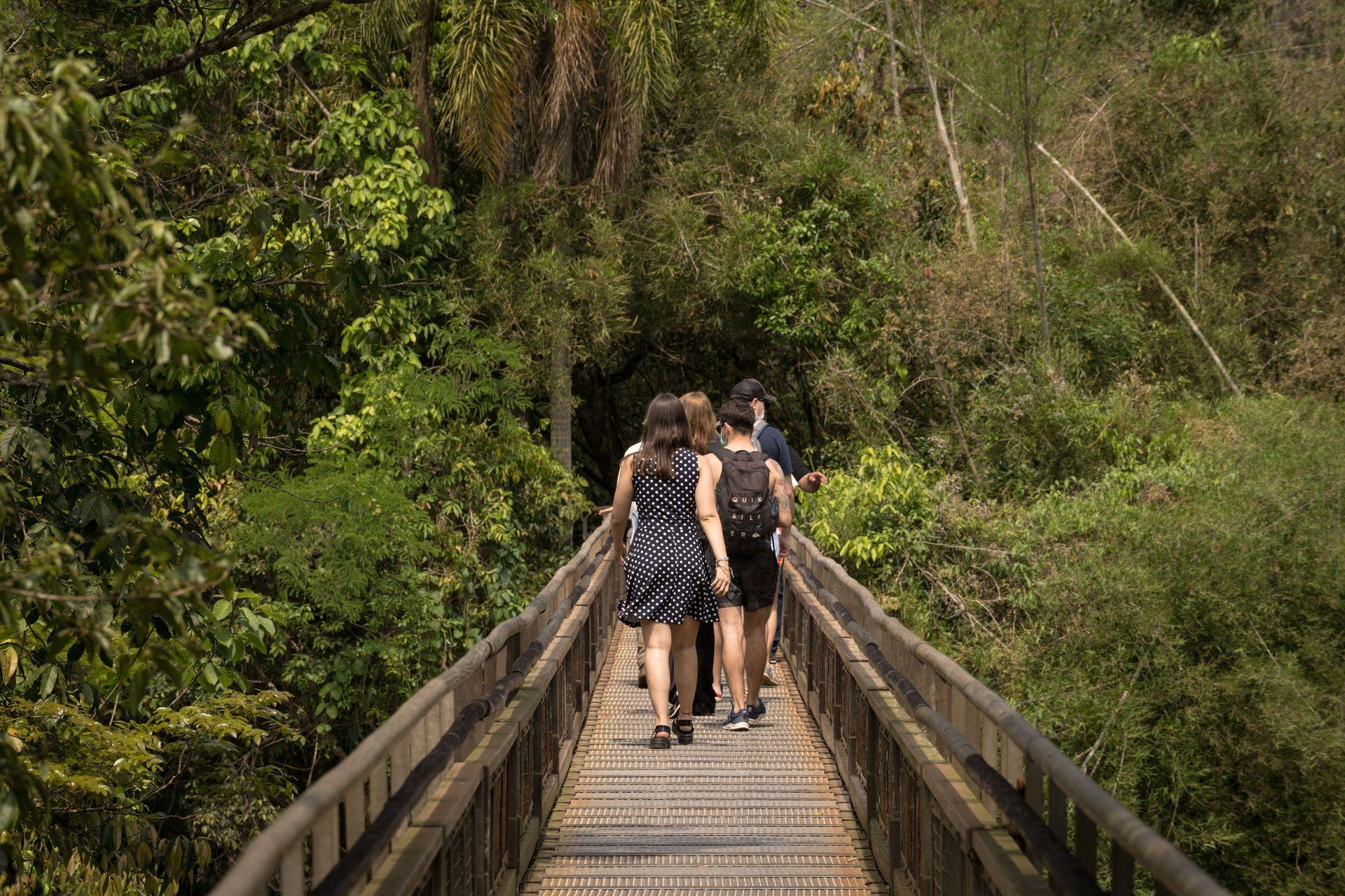 Las pasarelas del PN Iguazú son accesibles.