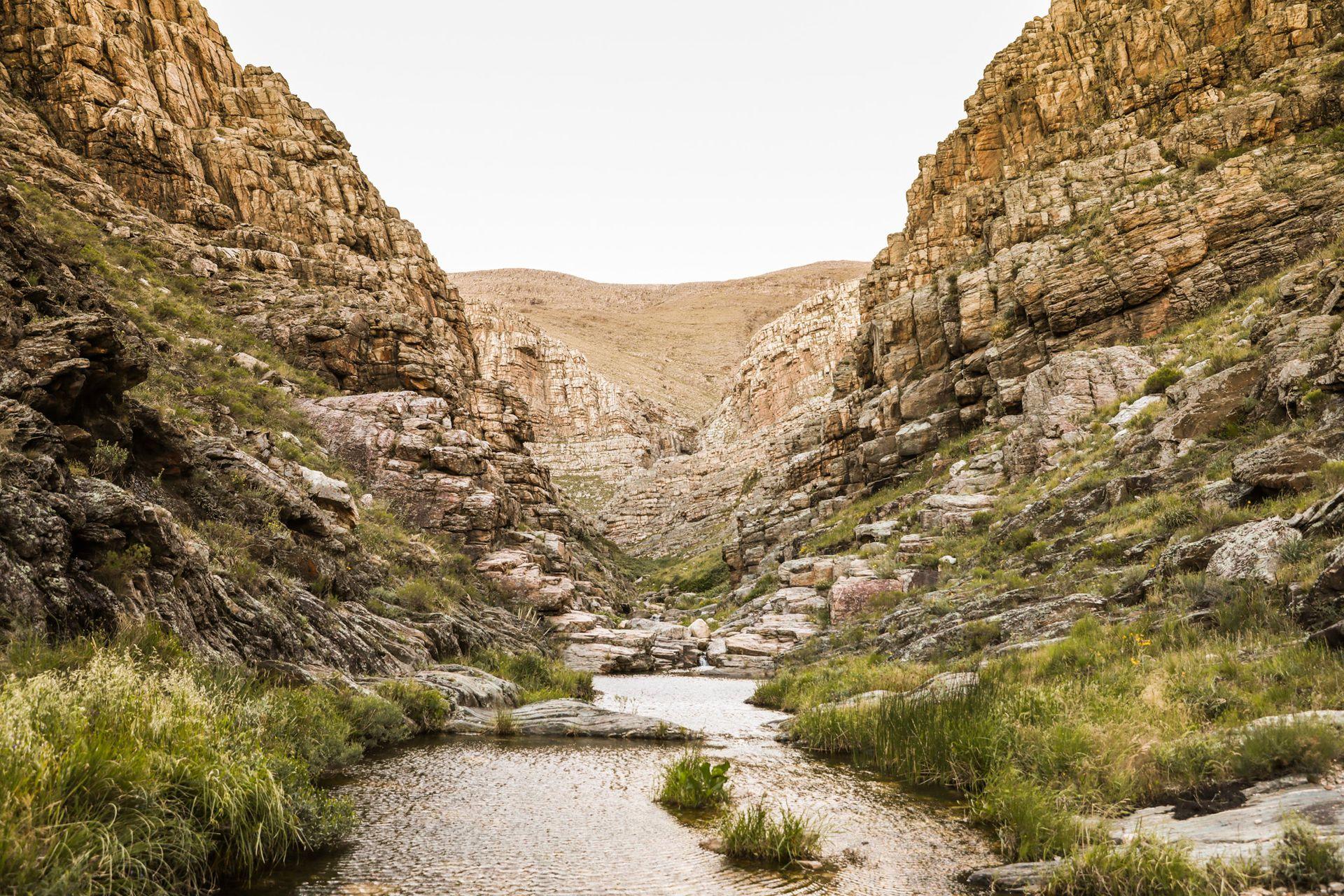 Sierras Grandes, nueva reserva privada en la Comarca de la Ventana - LA  NACION