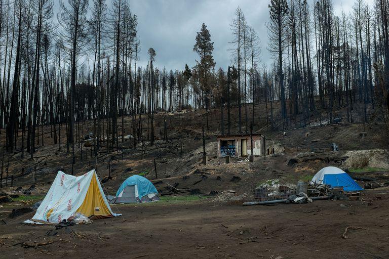 Vecinos de la Comarca Andina reconstruyen sus viviendas, que fueron destruidas durante el incendio forestal