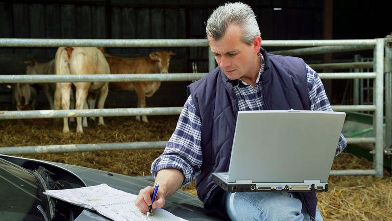 Agtech: sin límites en las fronteras de la innovación del agro