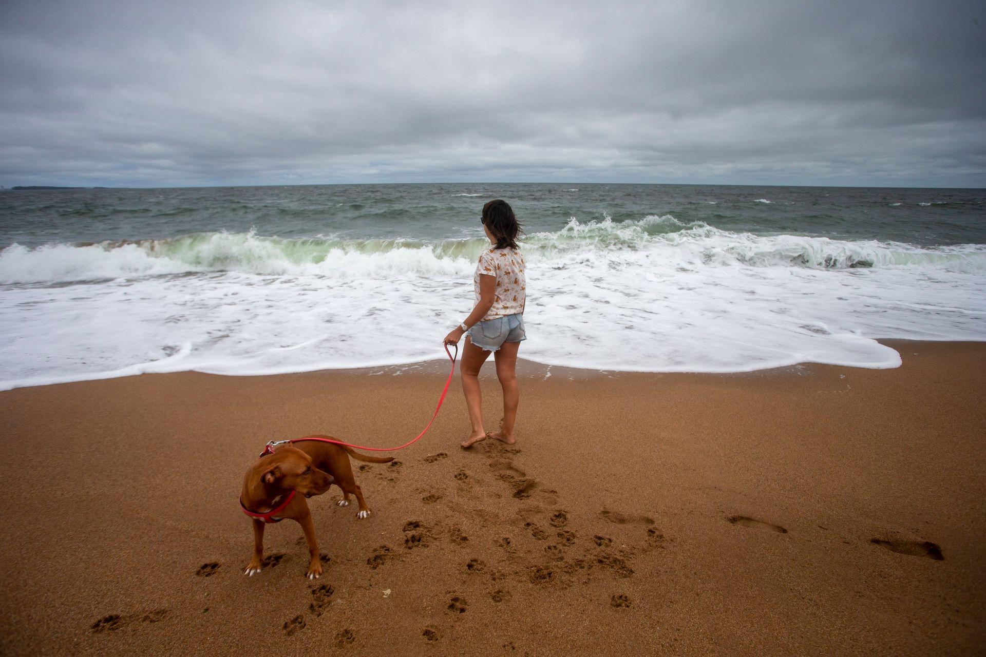 Hasta Cantamar llegó Fernanda junto a dos personas más y un perro que juega tranquilo en la inmensa playa