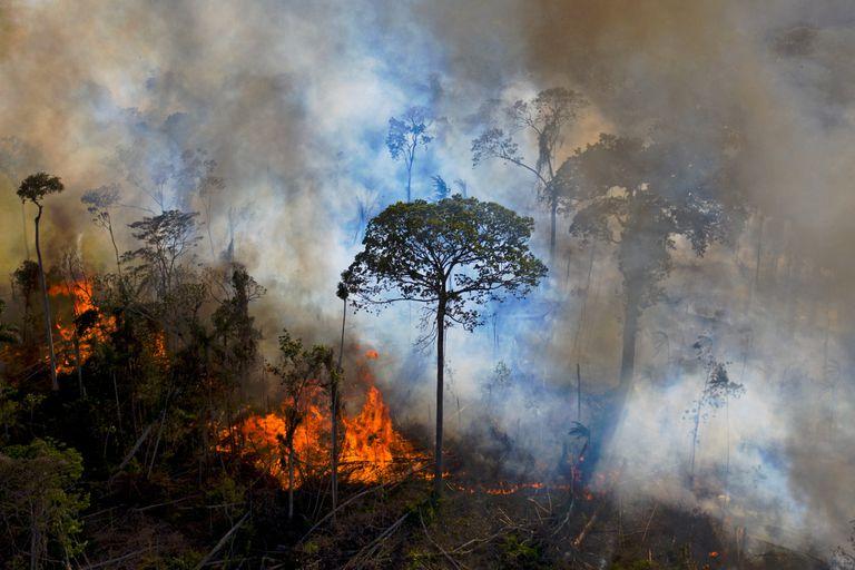 En esta imagen tomada el 15 de agosto de 2020, el humo se eleva de un fuego encendido ilegalmente en la reserva de la selva amazónica, al sur de Novo Progresso en el estado de Pará, Brasil.