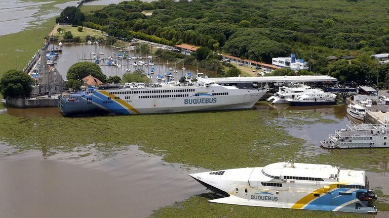 PUERTO MADERO. Un catamarán atraviesa los camalotes en el Río de la Plata