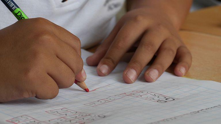 1 de cada 10 argentinos sufre este trastorno que compromete la lectoescritura