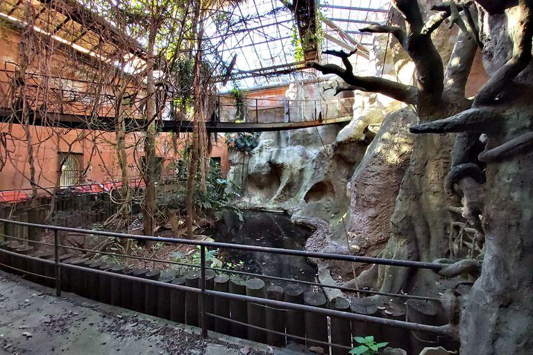 El interior de la Casa de los Osos conserva el ornamento agregado en los noventa para simular una selva subtropical; esa estructura debería quitarse en la restauración