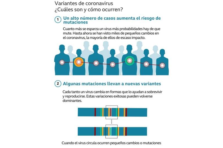 ¿Cuáles son y cómo ocurren las variantes del coronavirus?