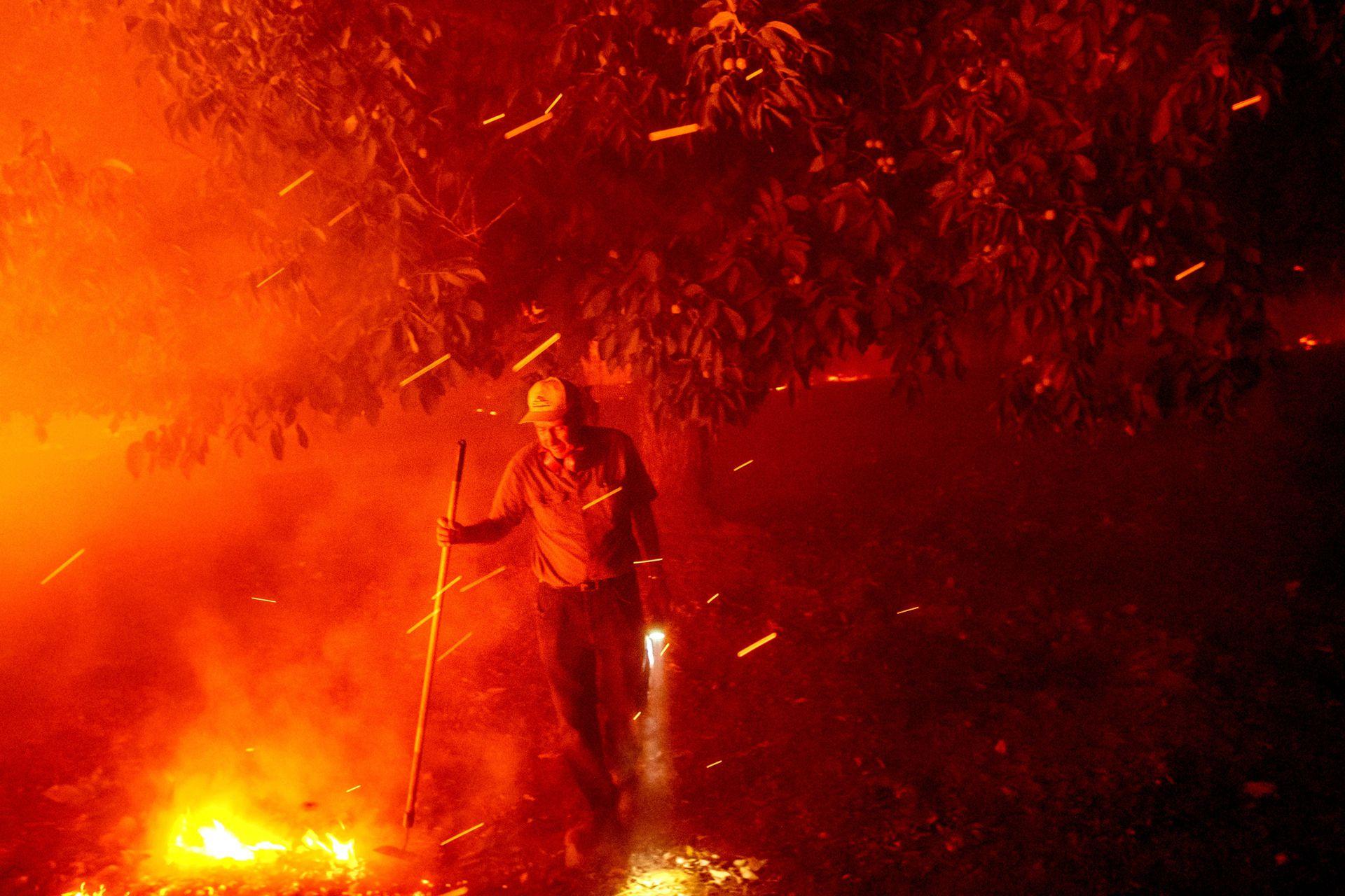 El más grande de los incendios está situado en el norte del estado y ya ha arrasado 17.800 hectáreas