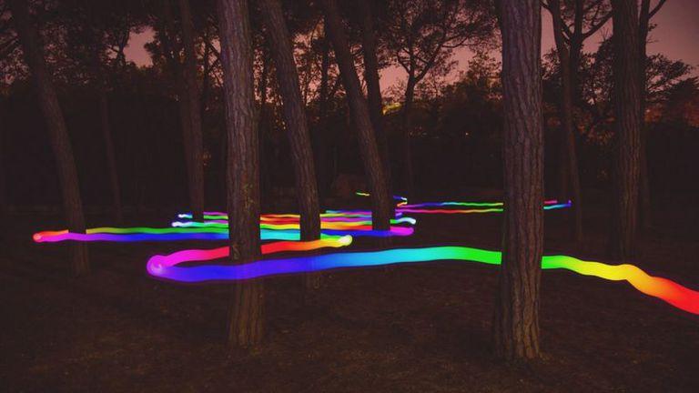 Si los colores son propiedades de la luz, no de los objetos, y cuando los vemos en ellos es por obra de nuestra mente, ¿entonces?