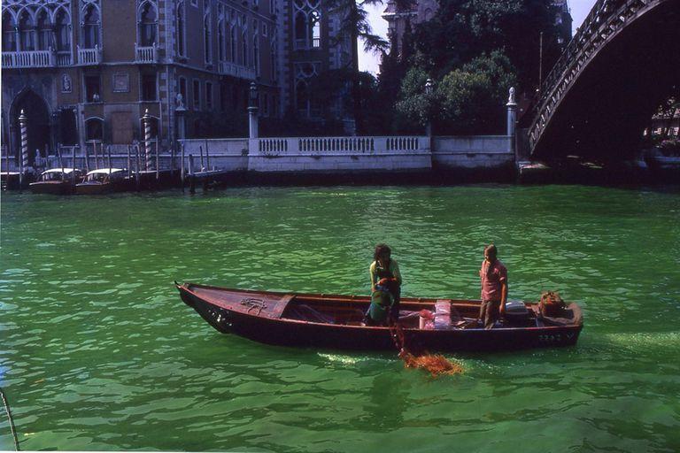 El Verde Uriburu de la libertad