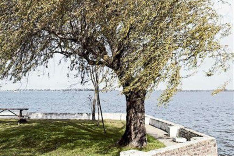 El campo, en la ecología poética de Baldomero Fernández Moreno