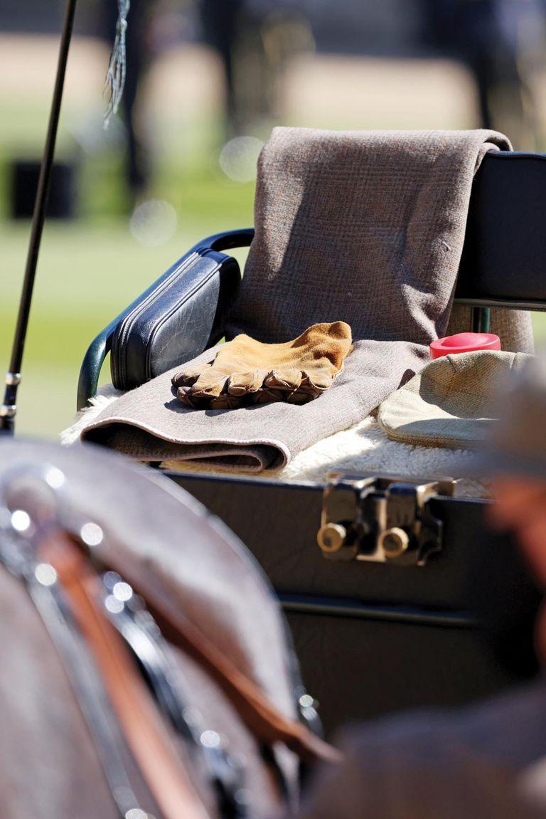 Sobre el asiento se colocó su boina, su fusta y sus guantes