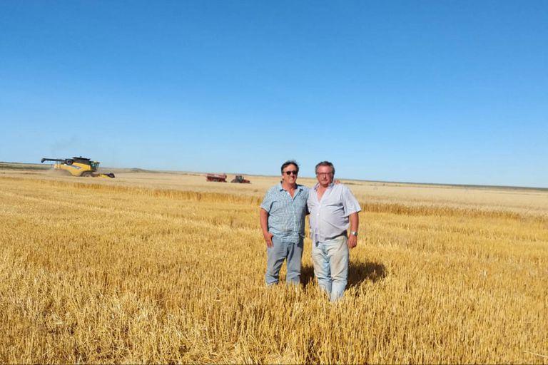En persona: el abecé para un trigo de 10.000 kilos en el norte de la Patagonia