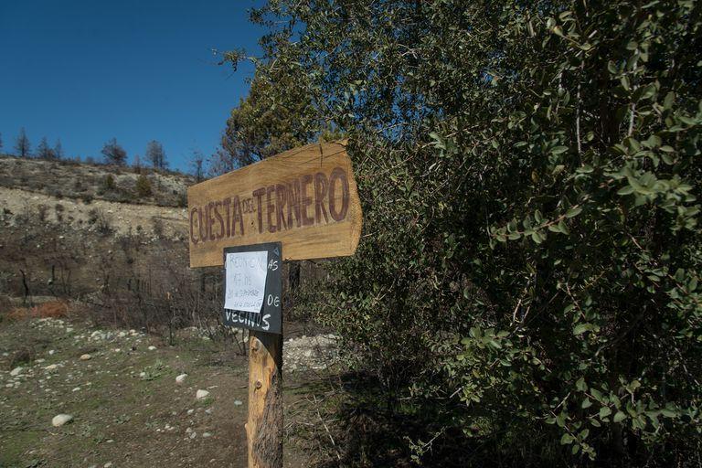 Una decena de encapuchados ocuparon tierras pertenecientes a la familia Rocco, en la zona de Cuesta del Ternero, a 40 kilómetros de El Bolsón