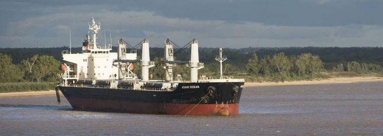 Por el aumento de los precios internos, Brasil continúa importando maíz argentino