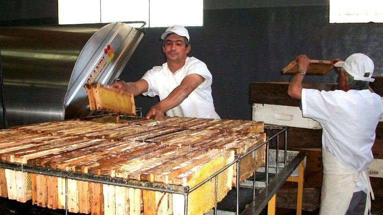 Miel del centro del país y frutas de Mendoza y de Río Negro, dos de los productros que serán ofrecidos en la misión comercial de Dubai