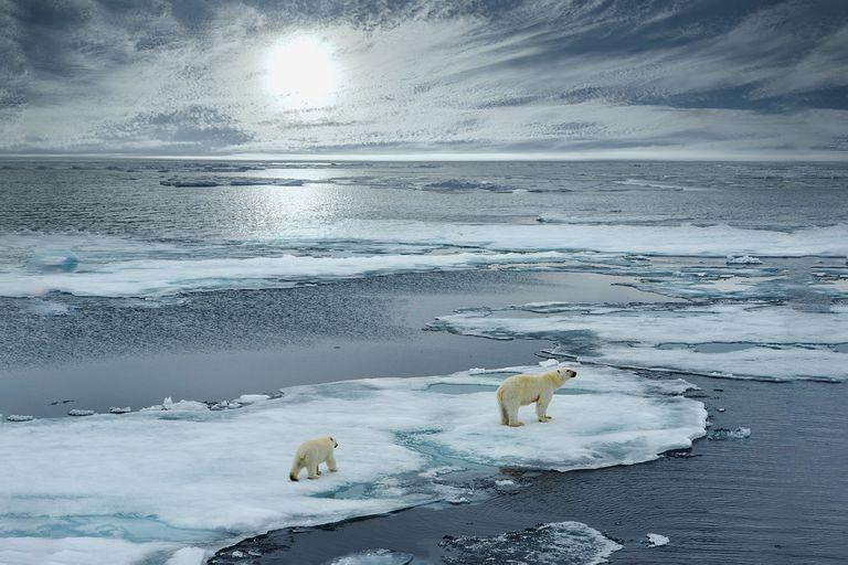 Las catástrofes naturales por el calentamiento global se multiplican, pero no logramos actuar de forma colectiva