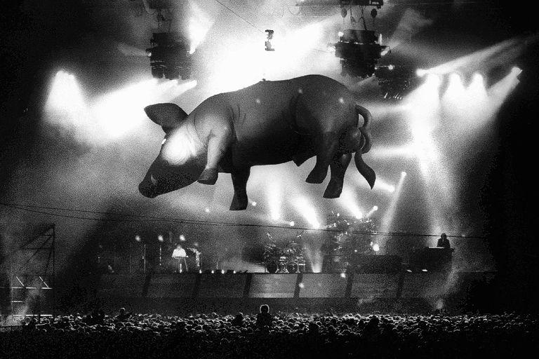 El cerdo volador durante un concierto de Pink Floyd en Holanda, 1989