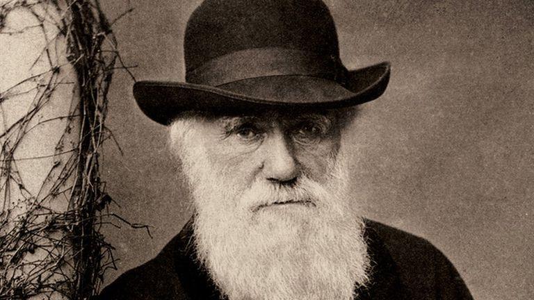 El trabajo de Charles Darwin sobre la teoría de la evolución por selección natural cambió la forma en la que vemos el mundo natural.